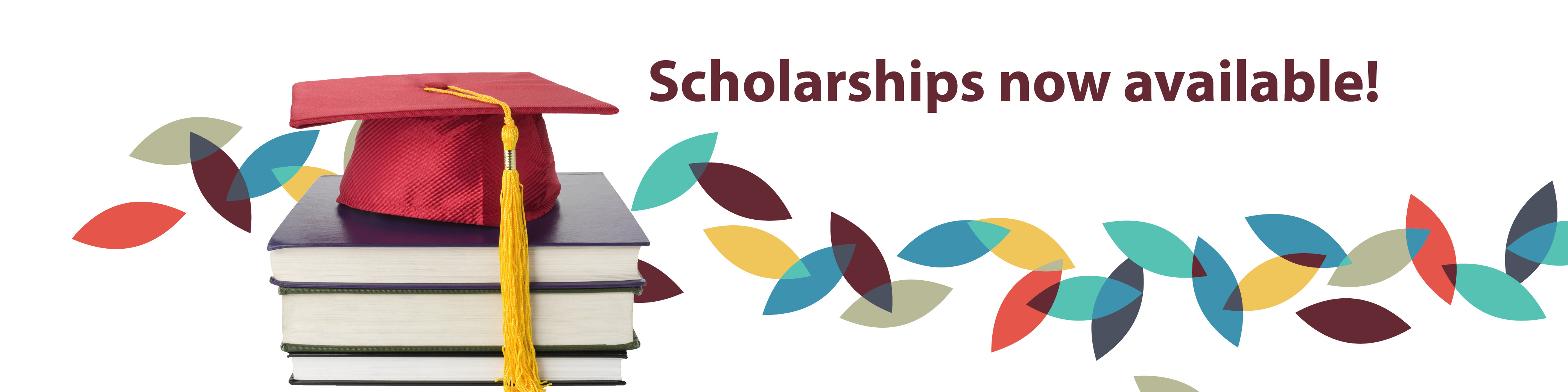 Scholarship Page Banner